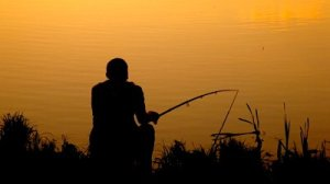 http://ak.picdn.net/shutterstock/videos/990019/preview/stock-footage-back-view-of-man-sitting-with-fishing-rod-near-pond-during-sunset.jpg
